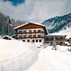 Alpino Plan Selva