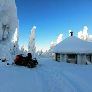 8-daagse rondreis Reindeers and snowmobiles